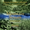 Birds & Streams 2 - Mountain Stream