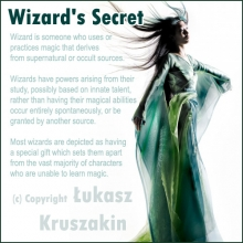 Wizard's Secret